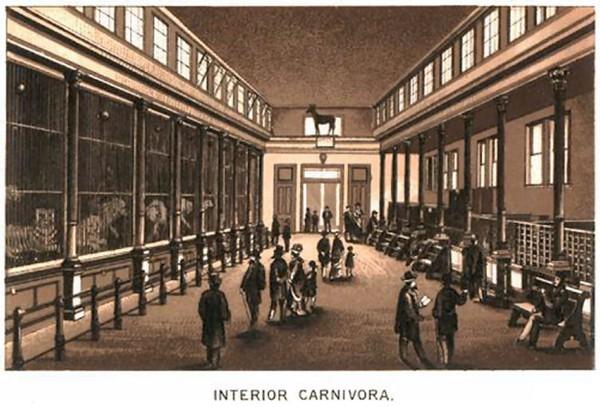 Cincinnati Zoo Interior Carnovora