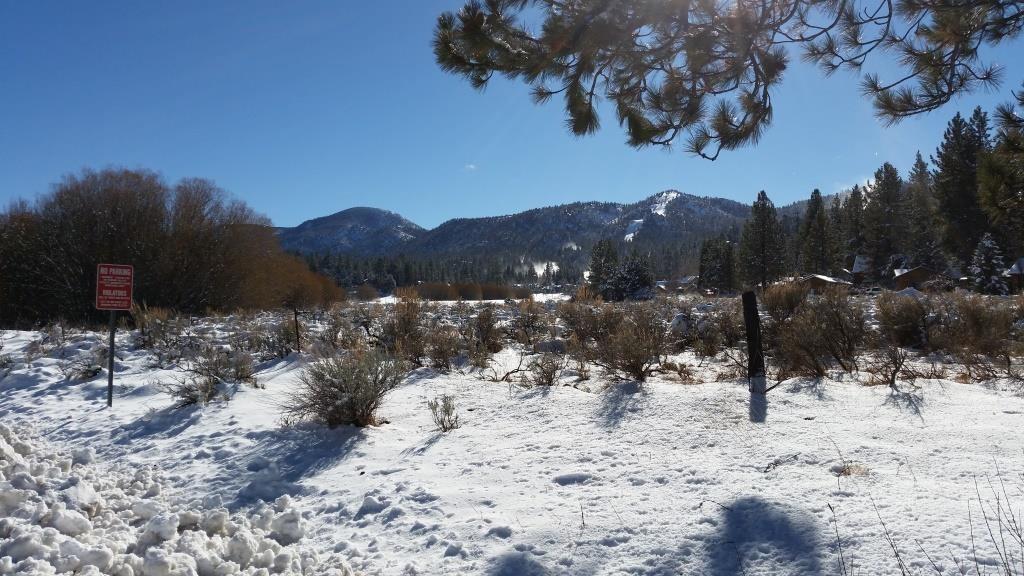 PGAV Destinations Big Bear Alpine Zoo