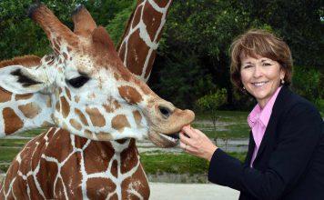 carol kruse zoo miami giraffes Blooloop