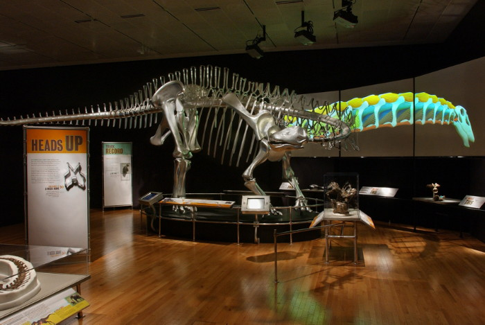 The Cleveland Museum Of Natural History Dr Evalyn Gates On Inviting