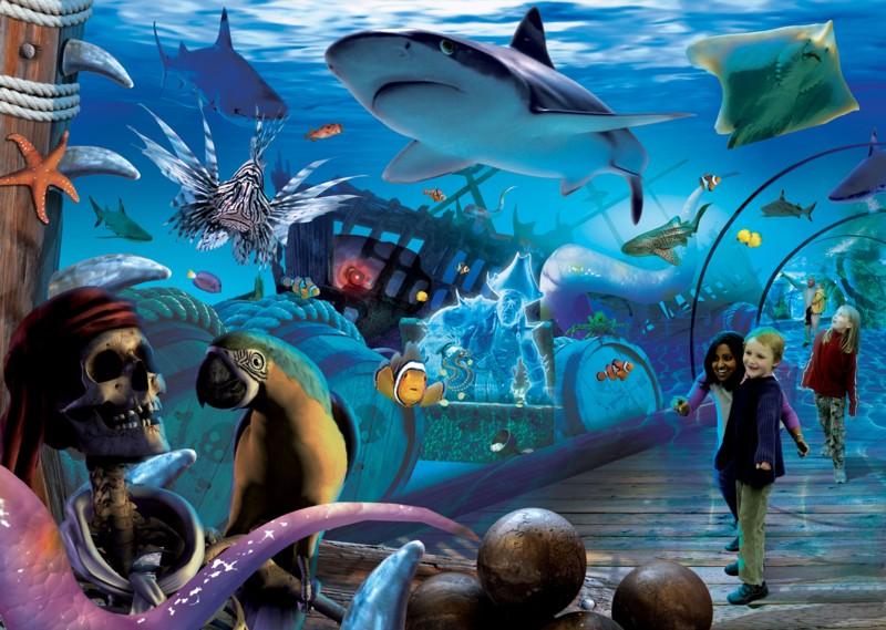 sea life with shark