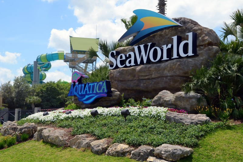 SeaWorld shares jump amid rumours of a possible takeover by Merlin
