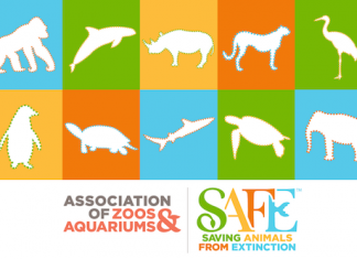 aza-safe-graphic