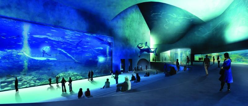 The Blue Planet Aquarium Copenhagen Storytelling With