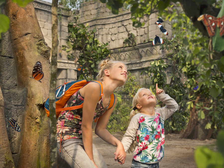 children and butterflies wildlands adventure zoo emmen