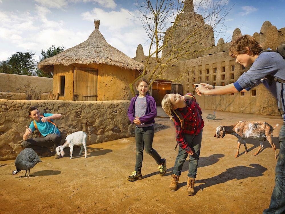 children at wildlands adventure zoo emmen