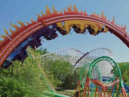 fireball-eagle-six-flags-st-louis-theme-park
