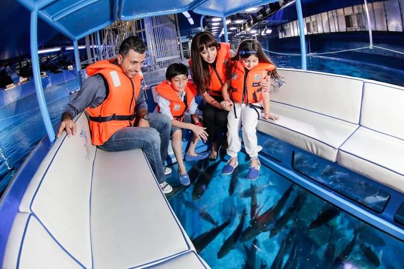 dubai-aquarium-underwater-zoo-glass-bottom-boat
