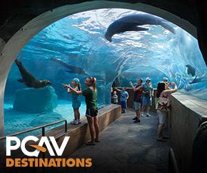 pgav zoos spot