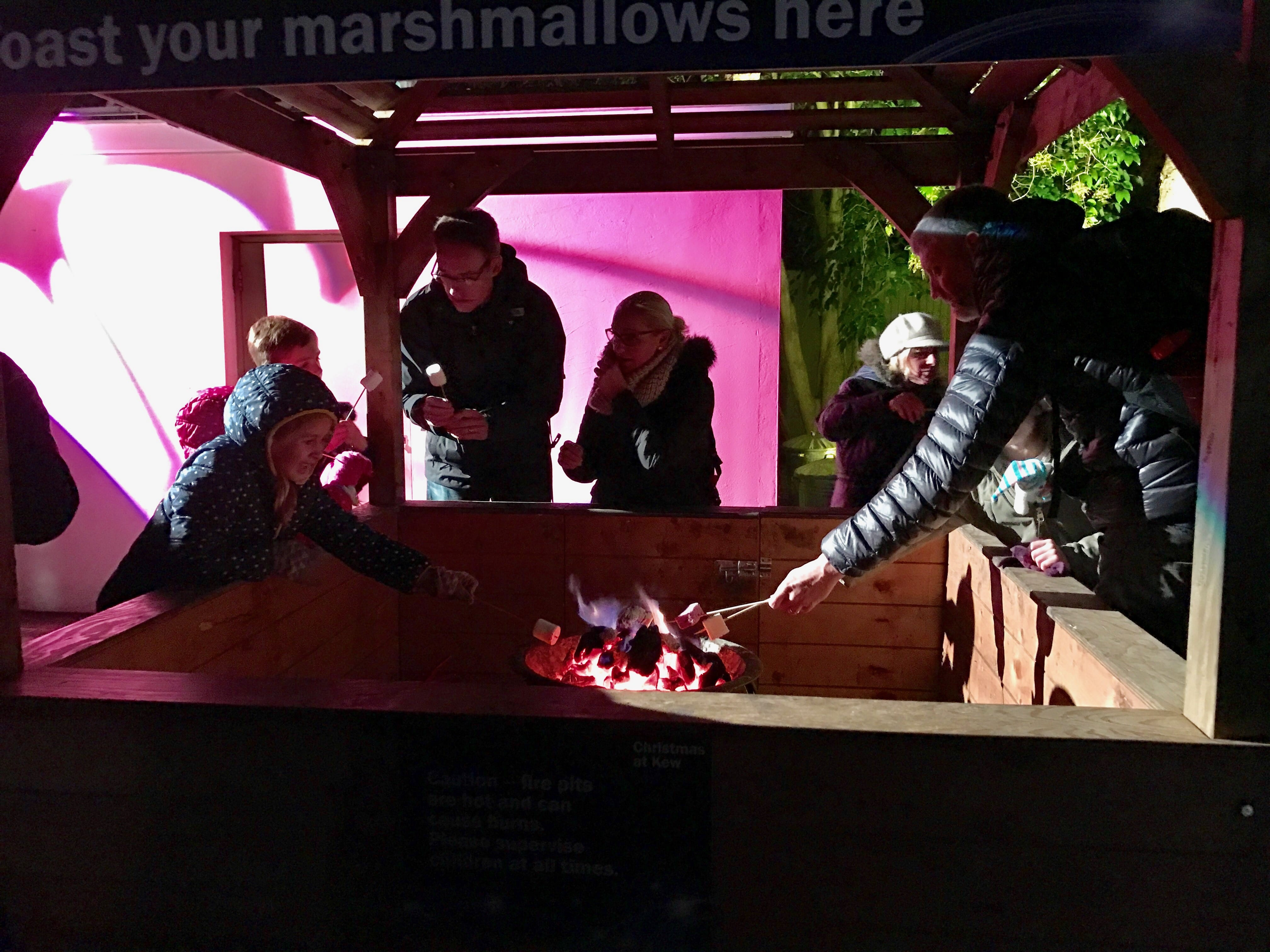 Marshmallow Toasting Christmas at Kew