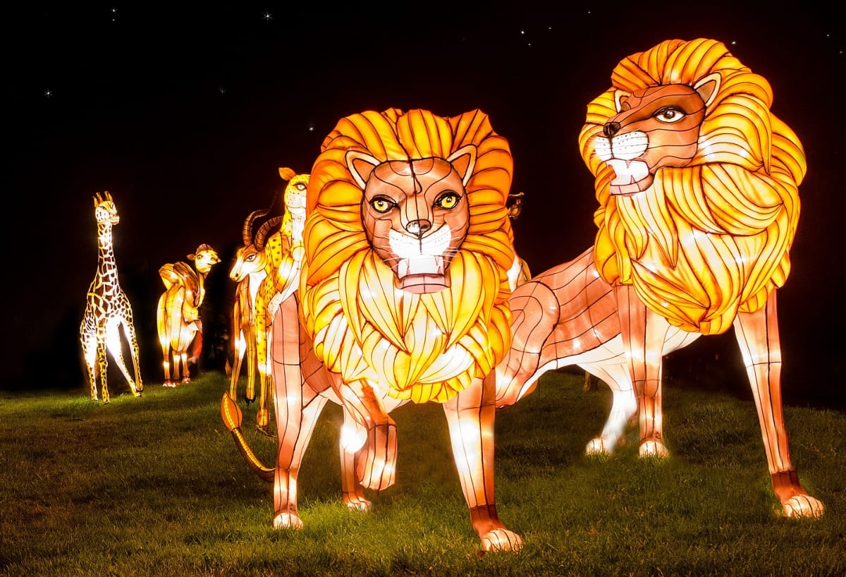 Longleat Festival of Light