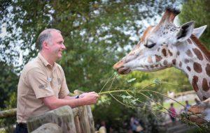 Jamie Christon, Chester Zoo, Giraffe