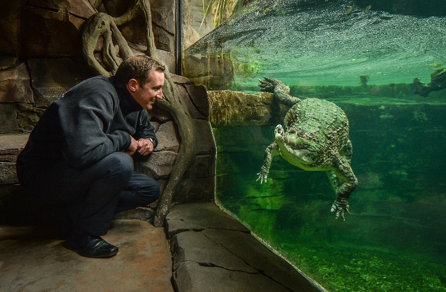 Chester Zoo breaks UK zoo record with 1.89m visitors in 2016