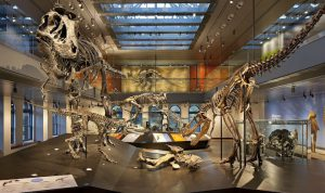 American Alliance of Museums: Annual Meeting and Expo 2017