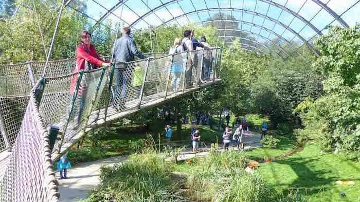 Pairi-Daiza-walkway belgian attraction zoo. F