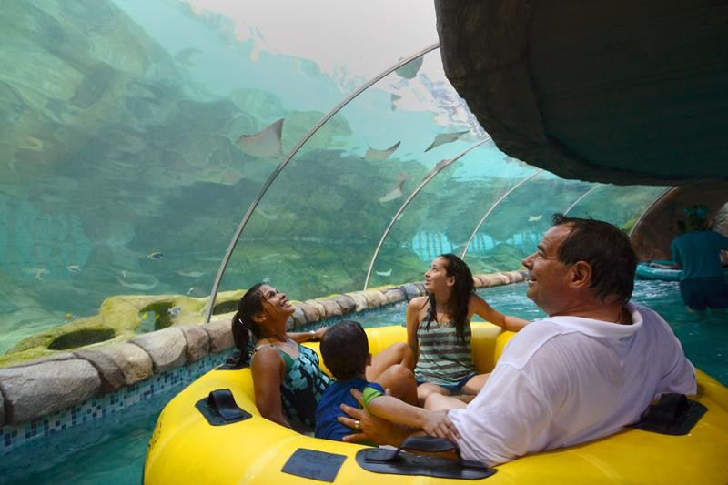 Proslide S New Feature Waterslides At Sea World San