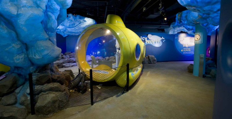 shedd aquarium ranked first as best attended in the us blooloop