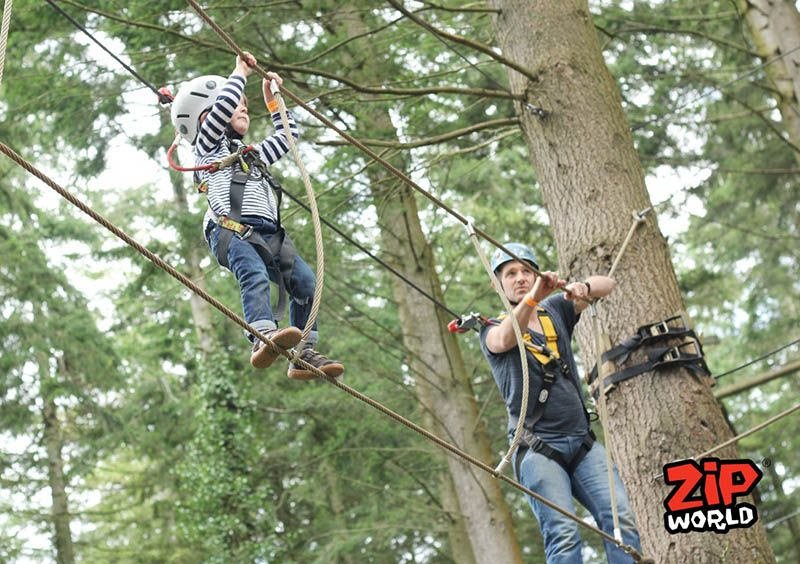 Zip World Junior Tree Trail