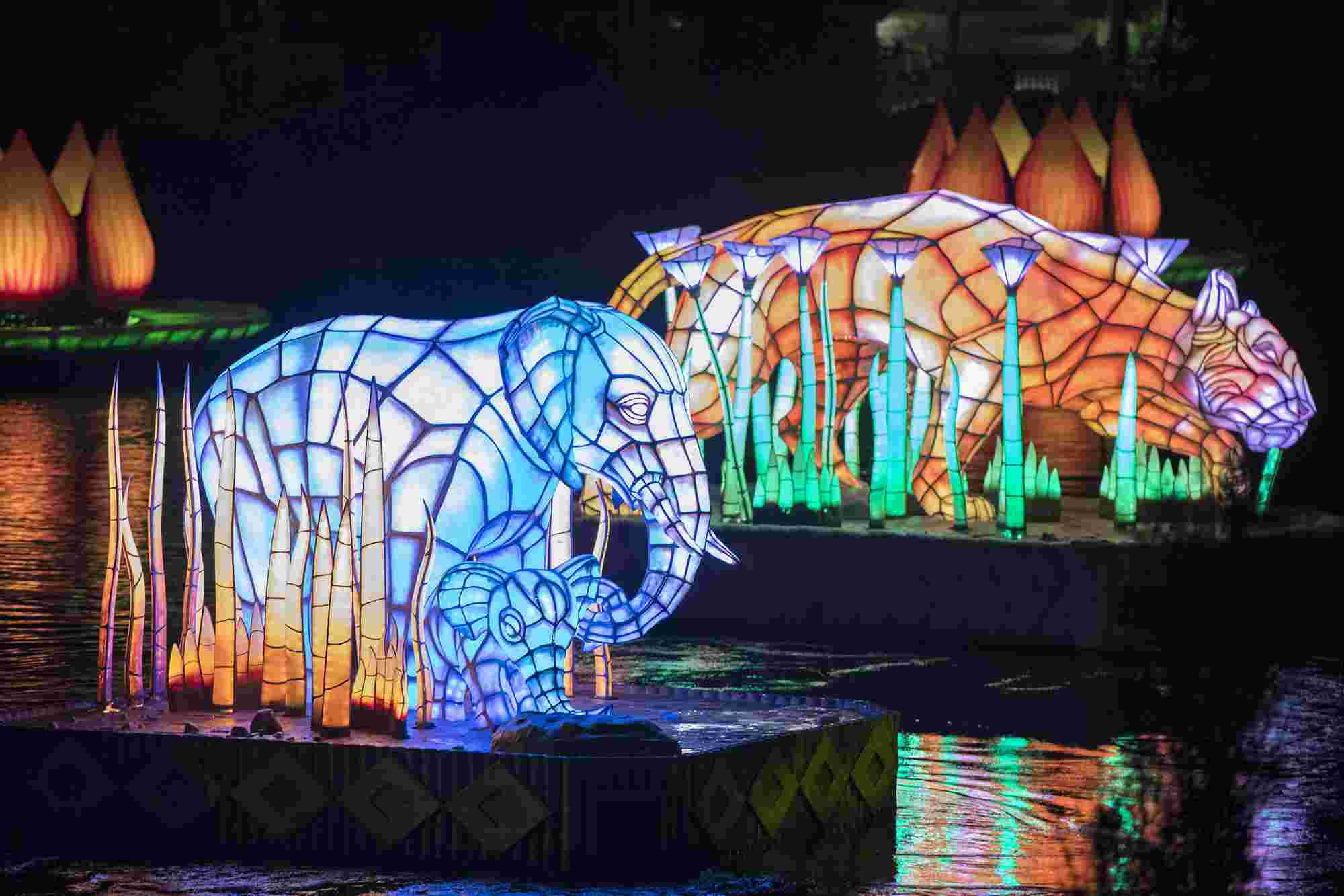 Rivers of Light Nighttime Spectacular Opens Friday at Disney's Animal Kingdom