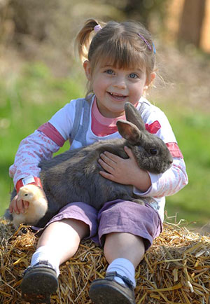 willows activity farm girl bunny
