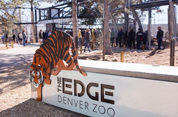 Denver Zoo tiger exhibit