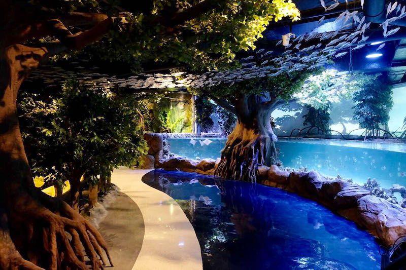 jakarta aquarium mangroves