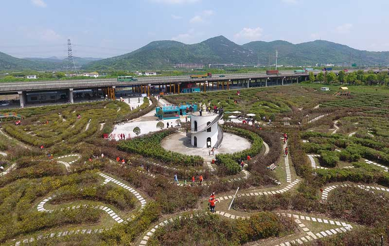 adrian fisher world's largest hedge maze ningbo china tower
