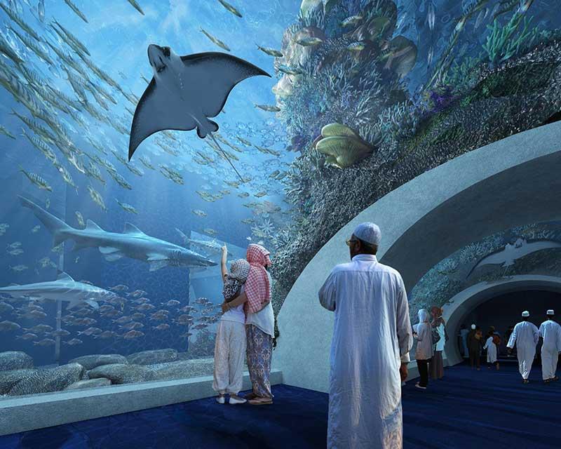 Oman Tunnel TGI