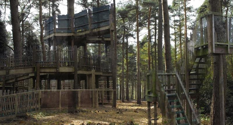 BeWILDerwood Cheshire 2