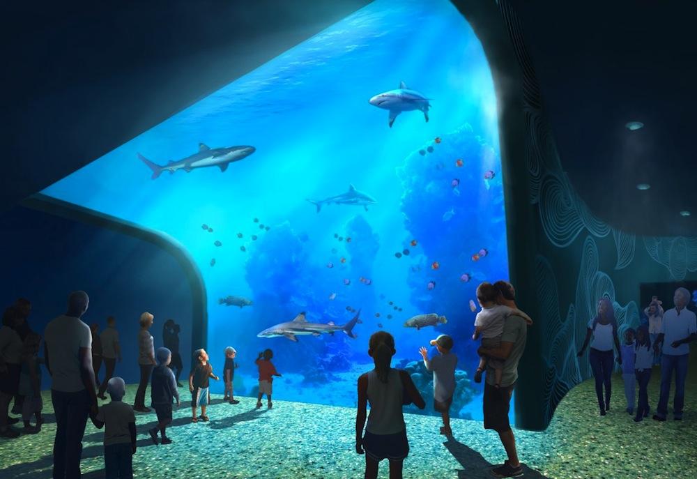 St Louis Union Station Aquarium 1