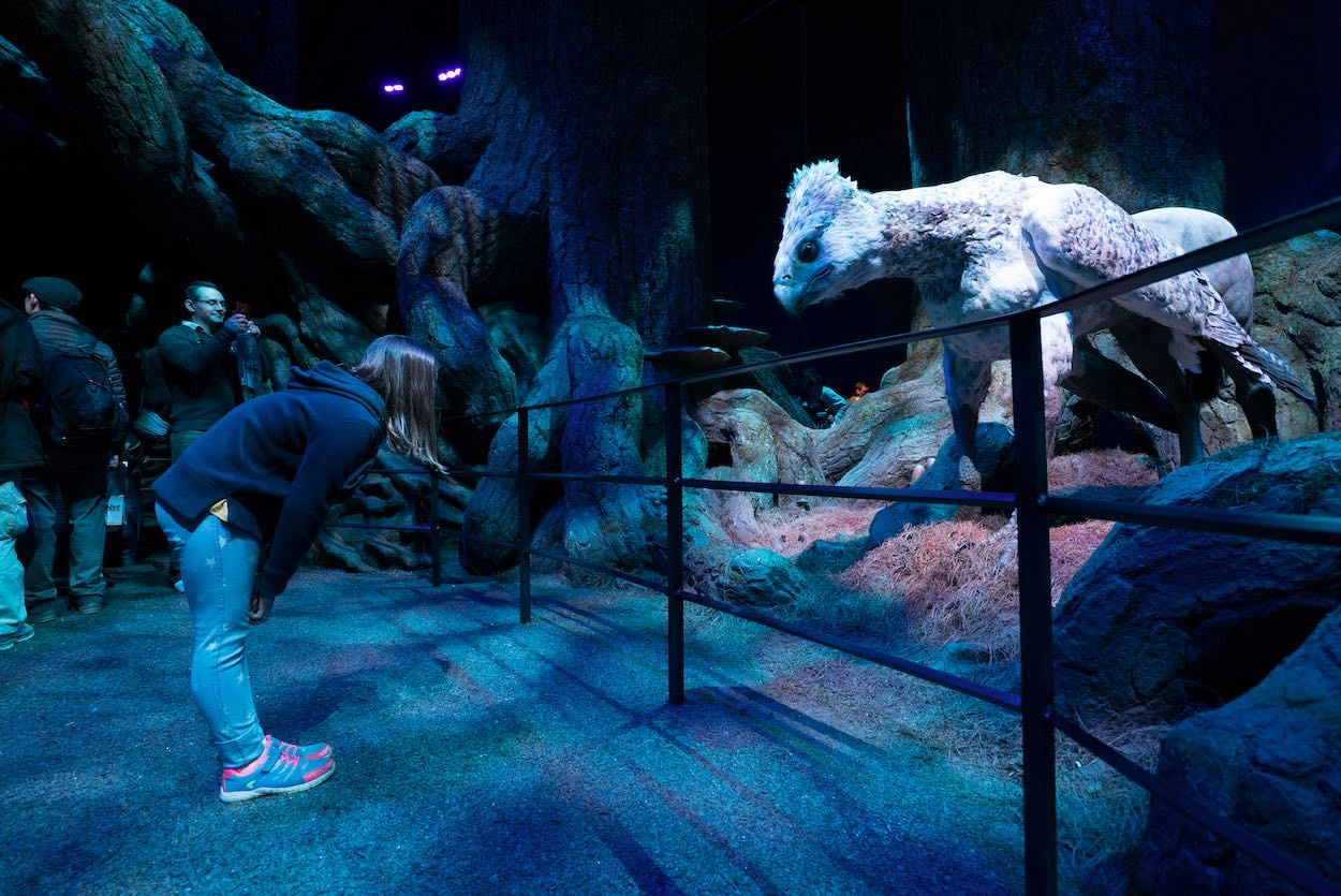 bowing to Buckbeak at forbidden forest warner bros harry potter jpeg