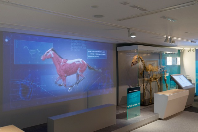 Imagineear's multimedia tours a galloping success at Newmarket's National Heritage Centre for Horseracing
