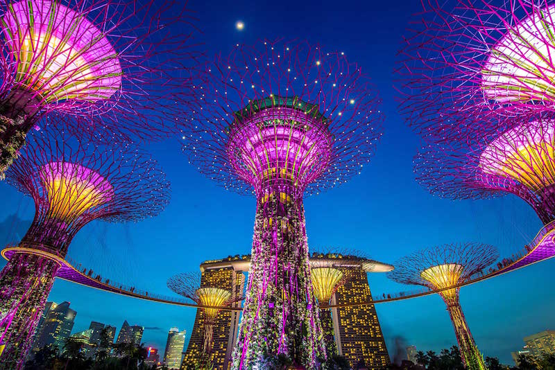 singapore bloolooplive asia 2017 gardens by the bay