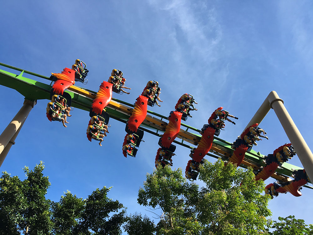 chimelong rollercoaster