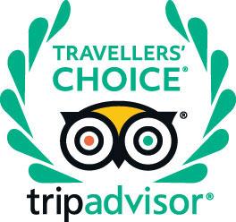 Travelers Choice TripAdvisor logo