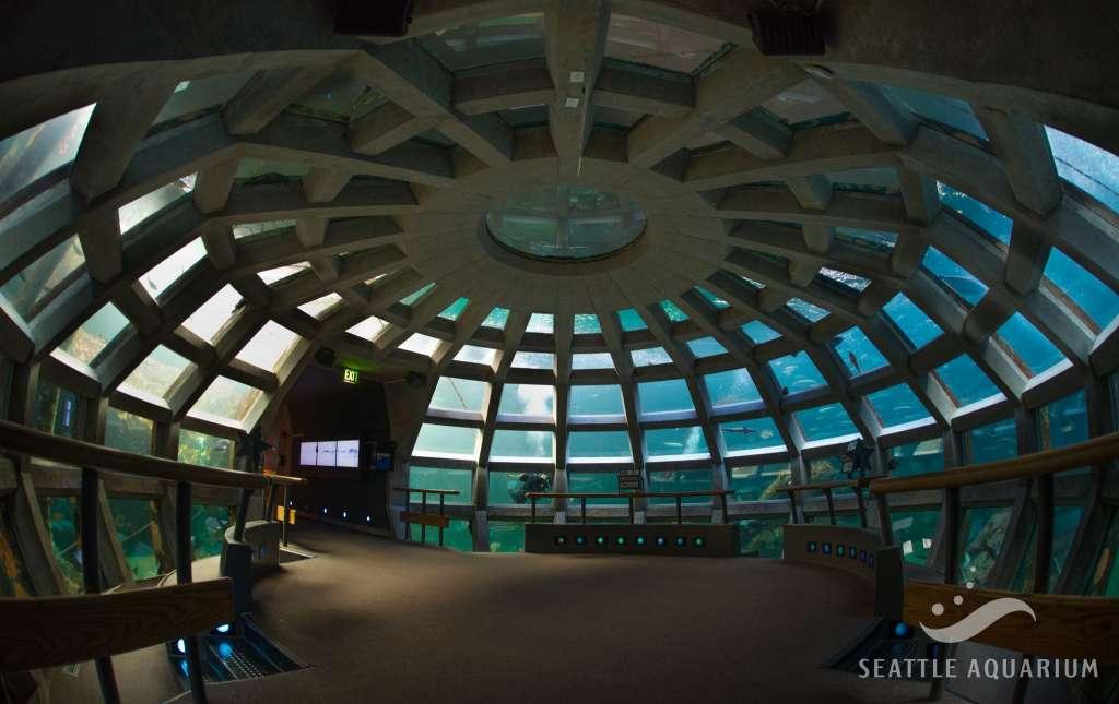 Seattle Aquarium expansion