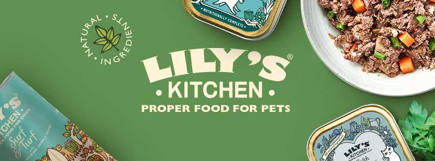 Lilys Kitchen Kidzania
