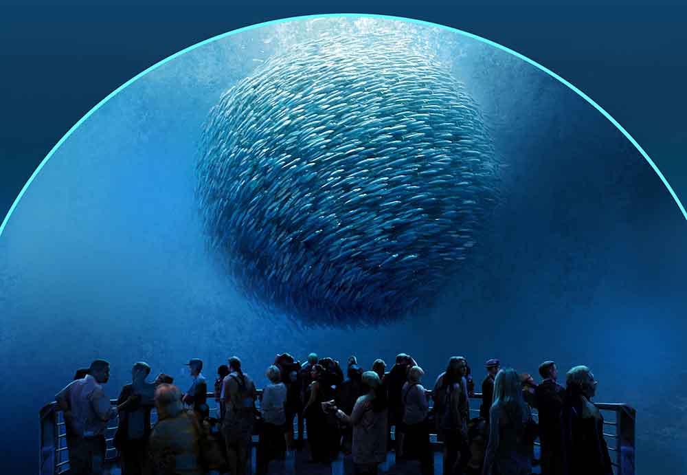 National Geographic Ocean Odyssey baitball