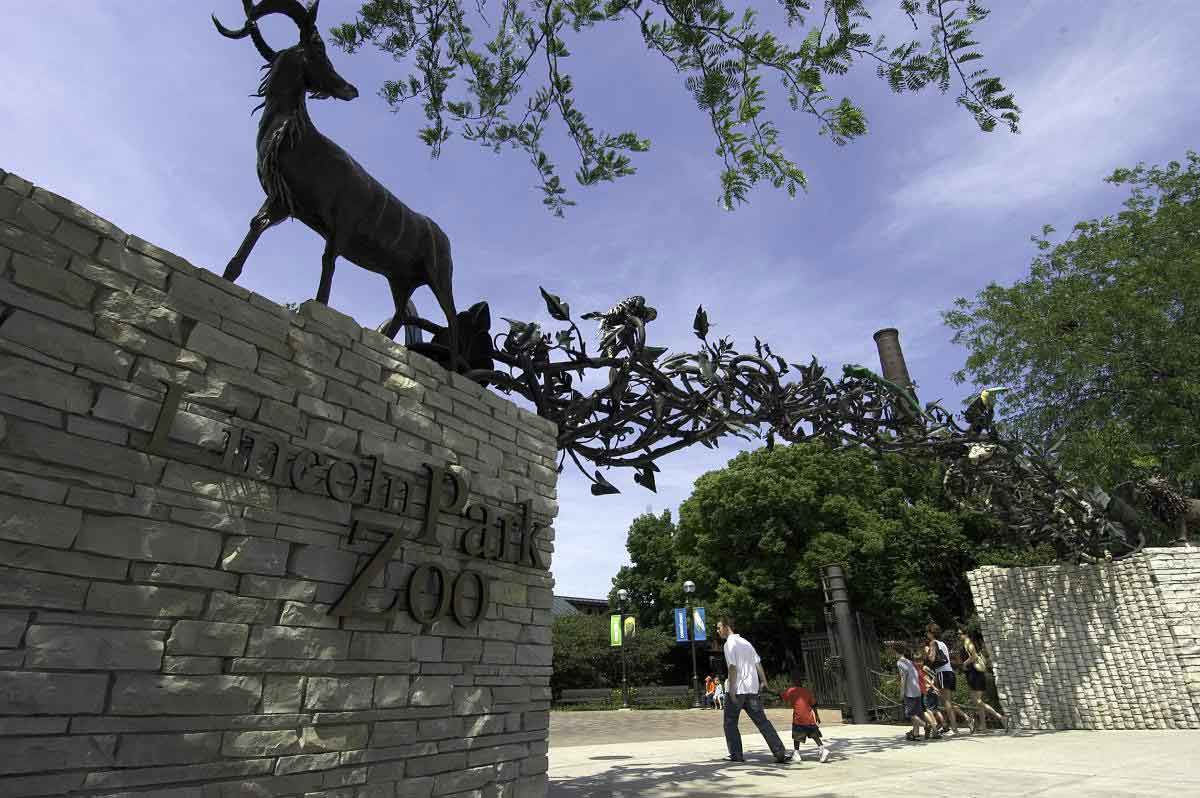 lincoln park zoo plans new 9 million visitor centre blooloop