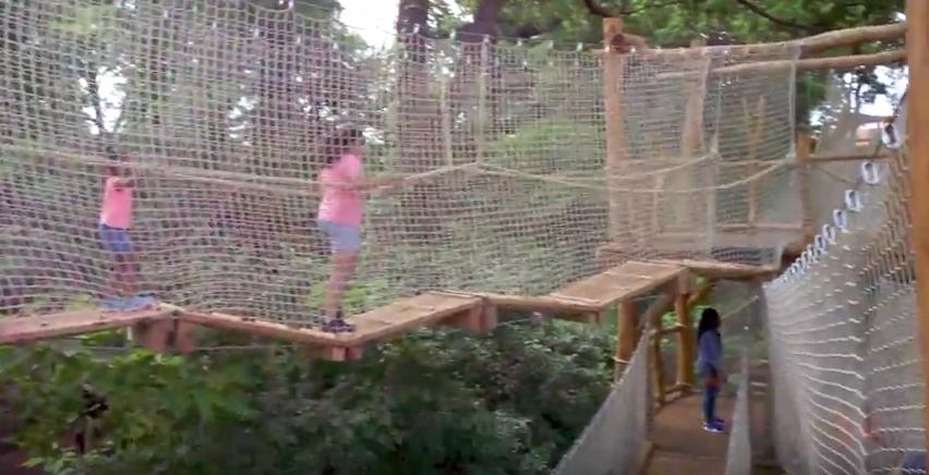 Nature Trek Aerial Adventure Bronx Zoo Tree Mendous