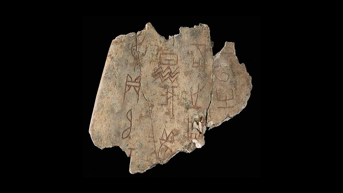 Oracle Bone Chinese Musuem