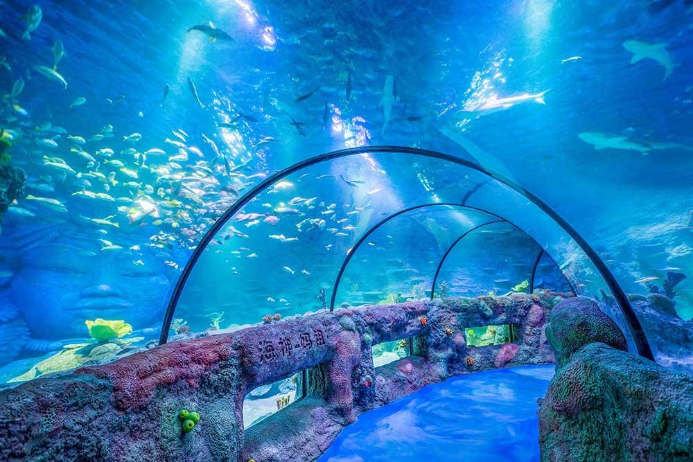Little BIG City Sea Life Chongqing