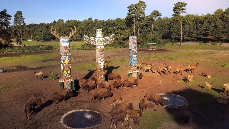 interactives at serengeti park disguised as totem poles