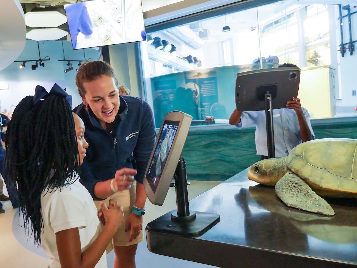 gilr interacts at Zucker Family Sea Turtle Recovery at south carolina aquarium