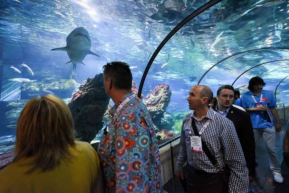 aquarium IAAPA EAS