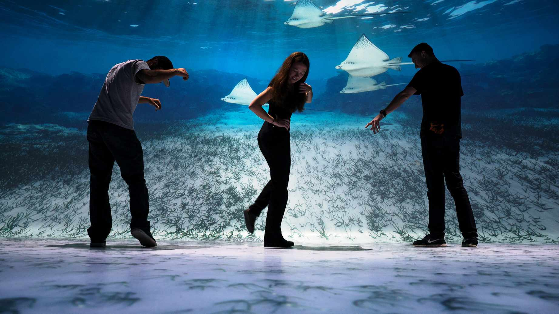 National Geographic Encounter: Ocean Odyssey ground-breaking deep sea immersive experience opens next month in Times Square.