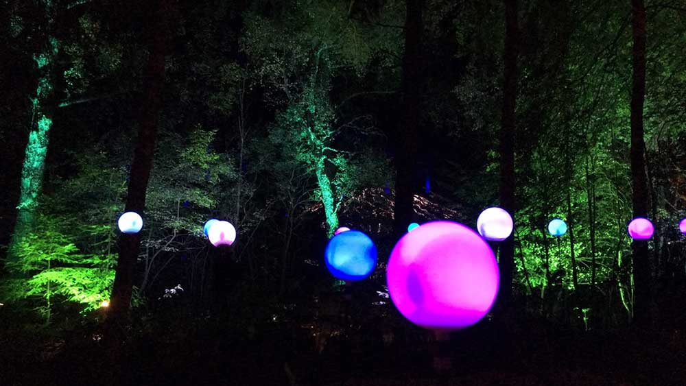 Enchanted Forest Oir an Uisge