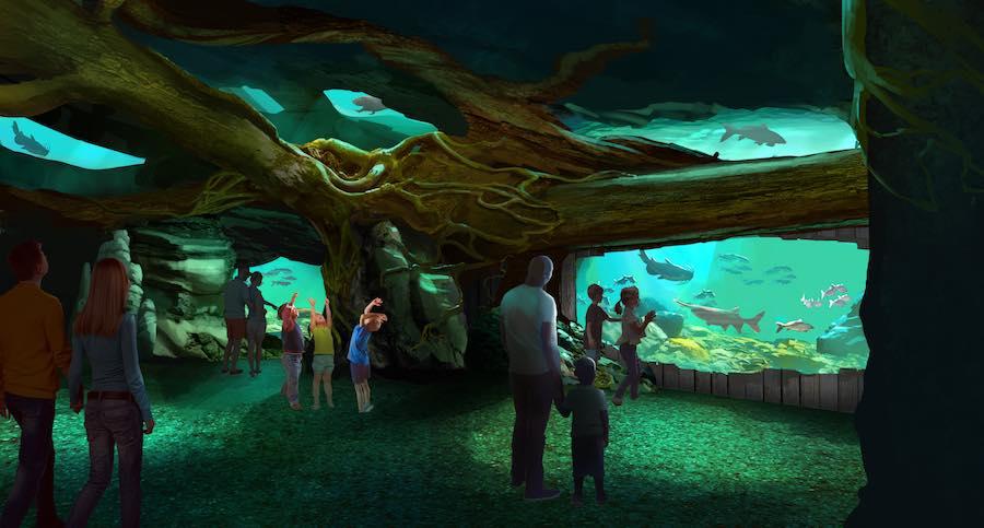 St. Louis Aquarium Mississippi River Exhibit