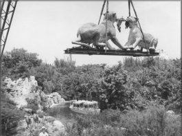 jungle cruise disney theme parks as art