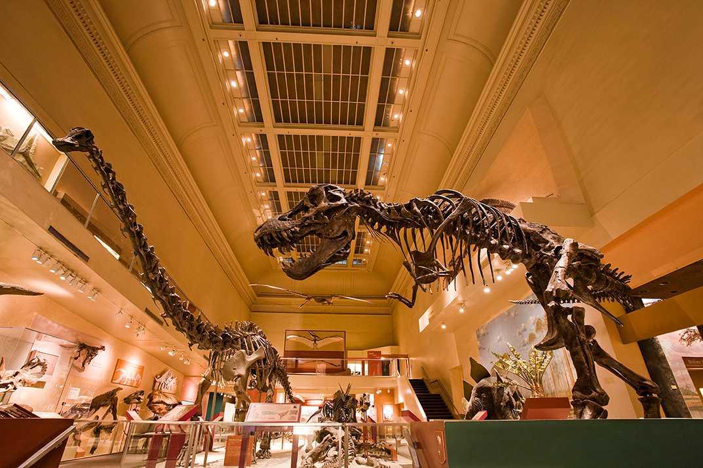 dinosaurs at smithsonian-digital-online presence